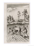 Roman Farmers Plowing with Oxen Giclee Print by Michael van der Gucht