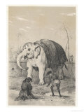 Worshipping a Sacred White Elephant in Siam Giclee Print by Jules Rigoet