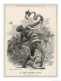 King Leopold II King of the Belgians Crushes the Belgian Congo. in the Rubber Coils Giclee Print by Linley Sambourne