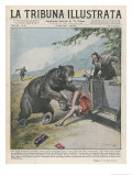 In Yellowstone a Bear Pats a Woman in a Car Premium Giclee Print by Vittorio Pisani