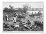 Swan-Upping on the Thames Giclee Print by W.j. Palmer