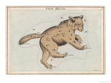 The Constellation of Ursa Major Giclee Print by Sidney Hall