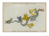 Hydra Constellation Including an Owl a Raven and a Sextant Giclee Print by Sidney Hall