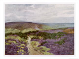 Yorkshire Scenery: Sleights Moor Giclee Print by Gordon Home