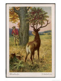 He Encounters a Stag with a Cherry Tree Growing from a Cherry Stone Implanted in Its Head Giclee Print by O. Herrfurth