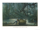 Hunting Turtles Giclee Print by P. Lackerbauer