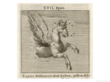 Equus the Horse Giclee Print by Gaius Julius Hyginus