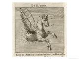 Equus the Horse Giclee Print by Gaius Julius Hyginus