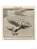 Olor the Swan Giclee Print by Gaius Julius Hyginus