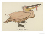 Pelican Catches a Fish Giclee Print by Germaine Hagemans