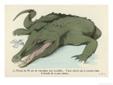 Birds are Allowed to Clean the Bits of Food Left in a Nile Crocodile's Mouth Giclee Print by Germaine Hagemans