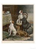 Four Dogs Lust after Their Owners&#39; Food Giclee Print by Fanny Moody