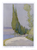 Row of Cypress Trees Edge the Path Near Salo Lake Garda Giclee Print by M. Mccrossan