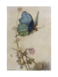 He Rides on the Back of a Butterfly Giclee Print by Warwick Goble