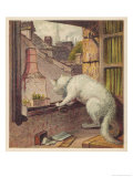 White Cat Contemplates the Outside World Through an Open Window Giclee Print by H.w. Petherick