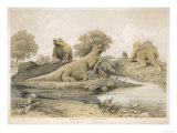 Models of Dinosaurs and Other Species at the Crystal Palace Sydenham Giclee Print