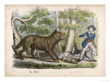 Traveller is Attacked by a Wolf Who Kills One of His Dogs Then Looks Meaningfully at Its Master Giclee Print
