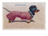 Dachshund Dressed as a Woman Premium Giclee Print
