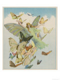 Fairy Flying with Butterflies Lámina giclée
