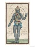 Theosophy Chakras 1696 Impression giclée