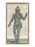 Theosophy Chakras 1696 Giclee Print