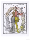 The Four Temperaments, Phlegmatic, Sanguine, Melancholic, Choleric Giclee Print