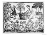 Flowers Vines Shrubs and Mandrakes in a Medieval Herb Garden Giclee Print