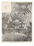 The Simple But Elegant Hedge Labyrinth in the Tivoli Gardens Copenhagen Denmark Reproduction procédé giclée