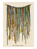 The Quipu Used by the Ancient Peruvians to Record Events Keep Accounts, Giclee Print