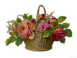Decorative Arrangement of Roses in Wicker Basket Giclee Print