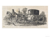 Dalmatian Coach Dog Guarding a Carriage Giclee Print