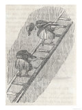 Girls Carrying Coal up Ladders Mary Duncan 'Began to Carry Coals When 12 Years Old Giclee Print