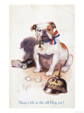 Patriotic British Bulldog, There's Life in the Old Dog Yet! Giclee Print