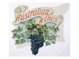 Australian Wine Giclee Print