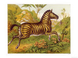 Running Amidst the African Flora Giclee Print