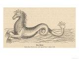 Sea Horse Giclee Print