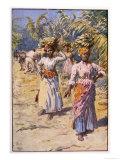 Jamaican Banana Plantation - Giclee Baskı