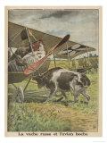 German Biplane Forced to Land in Russian Territory is Confronted by a Hostile Cow Giclee Print