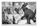 Performing Elephant Entertains the Crowd During a Circus Performance at the Crystal Palace Lámina giclée