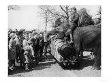 Man Rides an Elephant Entertaining Children at Chessington Zoo Giclee Print
