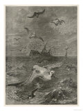 Albatross Hunts for Food in the Midst of a Storm Giclee Print