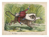 Tiger Attacks a Man and Carries Him off in Its Mouth Giclee Print