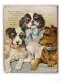 King Charles Spaniel Giclee Print