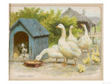 Geese and a Kenneled Dog Premium Giclee Print