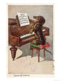 Musical Dachshund Plays a Tune on the Piano Giclée-tryk