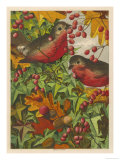 Two Robins Among Berries Reproduction procédé giclée