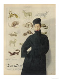Beautiful Woman is Wrapped up Warmly in a Russian Astrakhan Coat and Hat Giclee Print