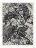 Chameleons in Foliage Impression giclée
