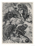 Chameleons in Foliage Giclee Print