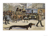 Very Long Dachshund Causes a Problem for Traffic When It Crosses the Road with His Owner Giclée-tryk